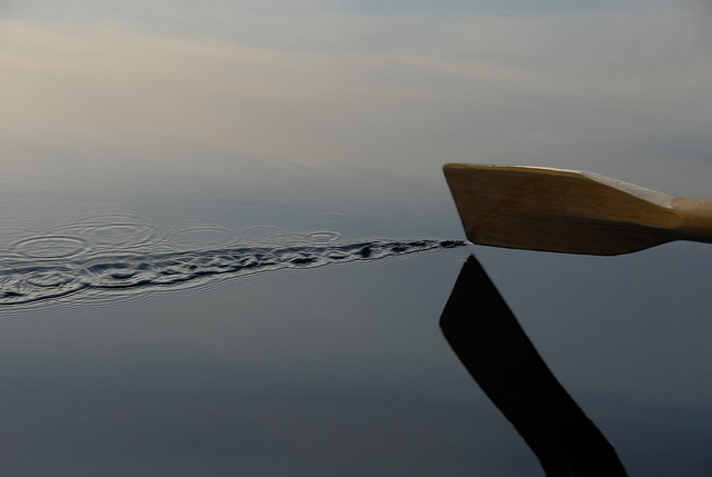 (Flickr: jtravism)