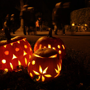 Quick write: Trick-or-treat schemes and writing dreams