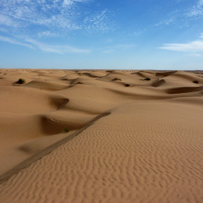 Quick write: Search the desert for writing life